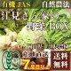[クール便無料] 江見さん家の野菜BOX 自然農法 有機JAS (岡山県 江見農園) 産地…