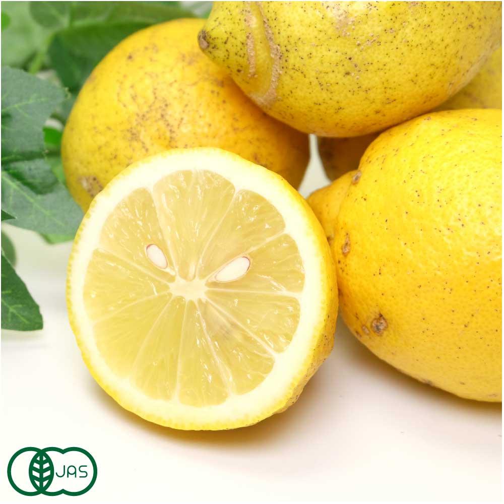 【Bサイズ混合】 有機 レモン 5kg 有機JAS  (神奈川県 山下農園) 産地直送