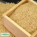 【令和2年度産】つがるロマン 玄米10kg 自然農法 (青森県 アグリメイト南郷) 産地直送