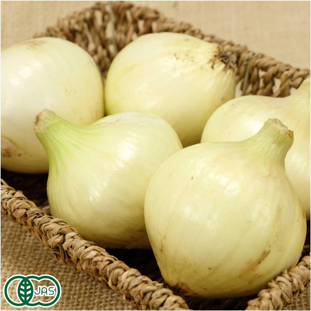 野菜・きのこ, たまねぎ  5kg JAS ( )