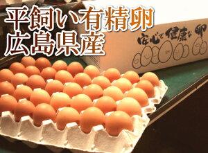 【日本で唯一の国産鶏「もみじ」より採れたこだわり卵】平飼い有精卵 40個(広島県 はやしなち...