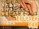 名人が育てた無農薬野菜を青森県から産地直送!(無農薬 にんじん)(無農薬 きたあかり)きた...