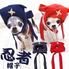 【チワワ コスプレ】忍者帽子 (チワワ 小型犬 忍者 コスプレ 帽子)