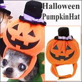 【チワワ ハロウィン】ハロウィン帽子 パンプキンハット (旧モデル チワワ 小型犬 かぼちゃ コスプレ カボ)