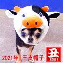 2021年 干支 モーモー帽子 │ チワワ 小型犬 月 年始...