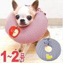 ドーナツエリザベスカラー ギンガム 1〜2号 │ チワワ 小型犬 犬 ...
