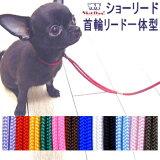 【チワワ首輪リード】SkipDog!プチインリード(チワワ小型犬リード首輪小さい軽いトレーニング)