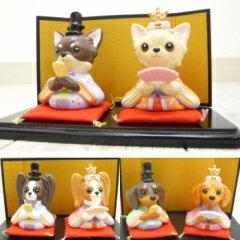 【チワワ 人形】わん雛 (チワワ パピヨン ダックス ひな祭り グッズ ペット用品)
