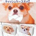 ティッシュ ボックスカバー DOG │ チワワ プードル ティッシュカバー ボックスカバー ティッシュ 雑貨 ペット 犬 小型犬 その1