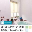 ロールスクリーン BASIC 浴室(採光/ライトな遮光) 【横幅41〜60cm × 高さ91〜180cm】 プルコード式のみ オーダー メイド 立川機工製 無地 防カビ 撥水加工