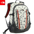 THE NORTH FACE ノースフェイス Big Shot CL 〔DAYPACK 2017SS 〕 (VP):NM71605