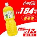 Ayataka-honoka200012