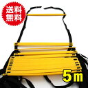 ラダー トレーニング 5M トレーニングラダー アジリティラダー コグニサイズ イエロー 黄色 送料無料