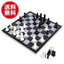 25cm チェス セット マグネチック マグネット式 磁石 本格サイズ チェス盤 ボードゲーム 持ち運び 便利 パーティー