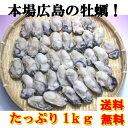 広島産 冷凍 かき Lから2Lサイズ!1Kg(剥き身)!【送...