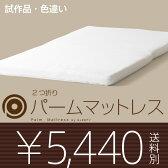 「2つ折りパームマットレス(M-S)シングル★NEW★」石崎家具