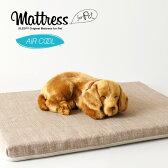 「ペットベッド用高反発マットレス(550×400×30)エアクール」犬小屋ペットベッドマットレス高反発石崎家具