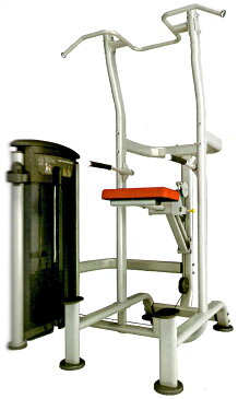 【送料無料】ウエイトアシーテッドチンディップコンボ(295ポンド)《impulse/インパルス》ダンベル・トレーニングマシン・筋トレ・格闘技用品のワイルドフィット