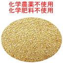 送料無料 USDA認定品 うるちきび 業務用2,6kg 卸元直売!化学合成農薬不使用原料