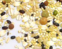 (●有機JAS認定品+(海外オーガニック認定機関認定品)100% こだわり十二穀米 2,8kg×2 香ばしくもっちり感が絶妙♪ 送料無料