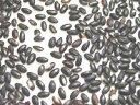 ★送料無料 ★福井県23年度産 雑穀米の原料に使用している有機黒米 業務用25kg言葉だけの自称ではなく、公的機関認証品黒米は、とっても安心♪ もっちり美味しい♪