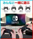 Nintendo Switch Pro コントローラー Nintendo Switch(有機ELモデル) ワイヤレス コントローラー 無線タイプ ジャイロセンサー TURBO機能 スイッチ コントローラー 500mAh バッテリー内蔵 キャプチャー機能 ダブルモーター HD振動 ゲーム コントローラー 3