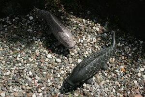 【送料無料】枯山水セット(鯉2匹)玉砂利とピッタリ^^日本庭園をより演出してくれます♪【魚のオーナメント】