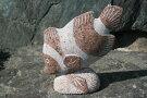 【送料無料】「石の魚」【赤石】魚の彫刻品です♪