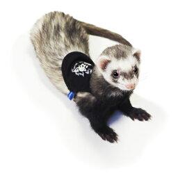 ferret鼬魂:ブラック【Sサイズ】 / フェレット 洋服 服 ウェア