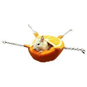 フルーツカップ:オレンジ/デグーモモンガおうちハンモック