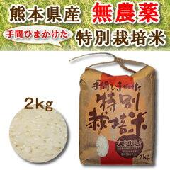 数量限定!安心・安全九州熊本産の無農薬のお米手間ひまかけた特別栽培米「大地の恵み」2kg九州...