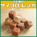 【送料無料】サイコロレンガ(キューブ ブリック) 50個セットミニレンガ キューブブリック おしゃれサイコロ レンガ 花壇用レンガ セット置くだけ 花壇 cube brick