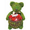 【送料無料】 可愛いクマのモスベアーフラワーバラのプリザーブドフラワーレッドe9102-09