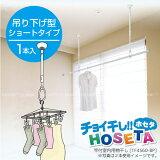 室內物干し 吊り下げ HOSETA[ショートタイプ]TA4560-BPA【RCP】10P13Nov14【楽ギフ包裝】