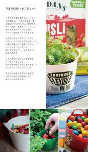 栽培キット/栽培セット/タブグリーン/TUBGREEN/tubtrugs