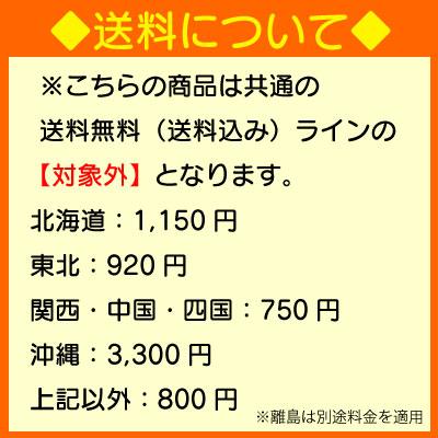 日本食研ドーナツボールミックス1kgドーナツの素パーティー大人数