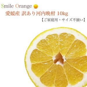 【送料無料】愛媛県産訳あり河内晩柑10kg