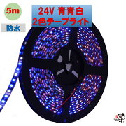 LEDテープライト防水24V5m2835600連青青白2色配列ホワイトブルー黒ベースリード線0.5sq20cm強粘着両面テープ正面発光PL保険加入