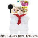 【訳あり】 ペットグッズ キャット ペティオ猫用変身着ぐるみウェア コック(ねこ、猫、ネコ)(コスプレ、こっく)【クリックポスト可】 その1