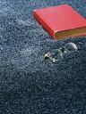ラグ スミノエ ≪BIG≫スミトロンニューツイスティ NEW TWISTY 200cm×250cm Lサイズ カーペット ホットカーペットOK 55%OFF