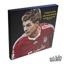 アートパネル Steven Gerrard Liverpool スティーヴン・ジェラード リヴァプール サッカー 名選手 インテリア イングランド・プレミアリーグ アートフレーム アートパネルスポーツ レジェンド スター グッズ 雑貨