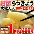 【鹿児島県】甘酢らっきょう