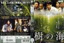 [DVD邦]樹の海 [萩原聖人/井川遥]/中古DVD【中古】【ポイント10倍♪8/24-20時〜9/11-10時迄】