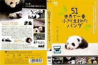 [DVD邦]51(ウーイー)★世界で一番小さく生まれたパンダ/中古DVD【中古】