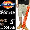 Dis-dr251-a