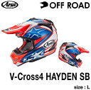 アライV-Cross4 HAYDEN SB L