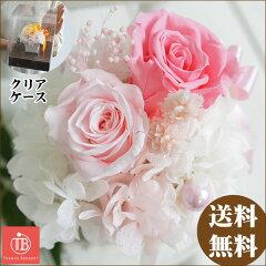 「お祝い」贈りたい花!誕生日/母の日プレゼント/結婚祝い/お返し/贈り物/ギフト/父/母/女性/内...