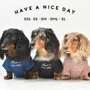 オリジナル ワッフルフレンオリジナル ダックス フレンチ袖Tシャツ ロゴ服 DOG dog petto ペット ゆうパケット対応