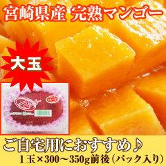 宮崎県産 完熟マンゴー 1玉(300〜350g) 大玉 簡易エコパック入り 太陽のたまごと同じ品種です...