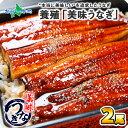 中国産 ウナギの蒲焼き 2尾 セット 120g〜130g前後 ウナギ うなぎ 鰻 蒲焼き 海鮮 土用 丑の日 敬老の日 ギフト プレゼント 北国からの贈り物 送料無料